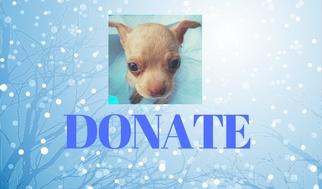 Holiday Donation
